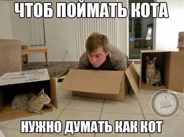 чтобы поймать кота - нужно думать как кот