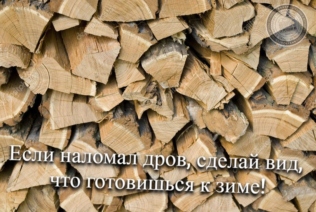 Если наломал дров, сделай вид, что готовишься к зиме!