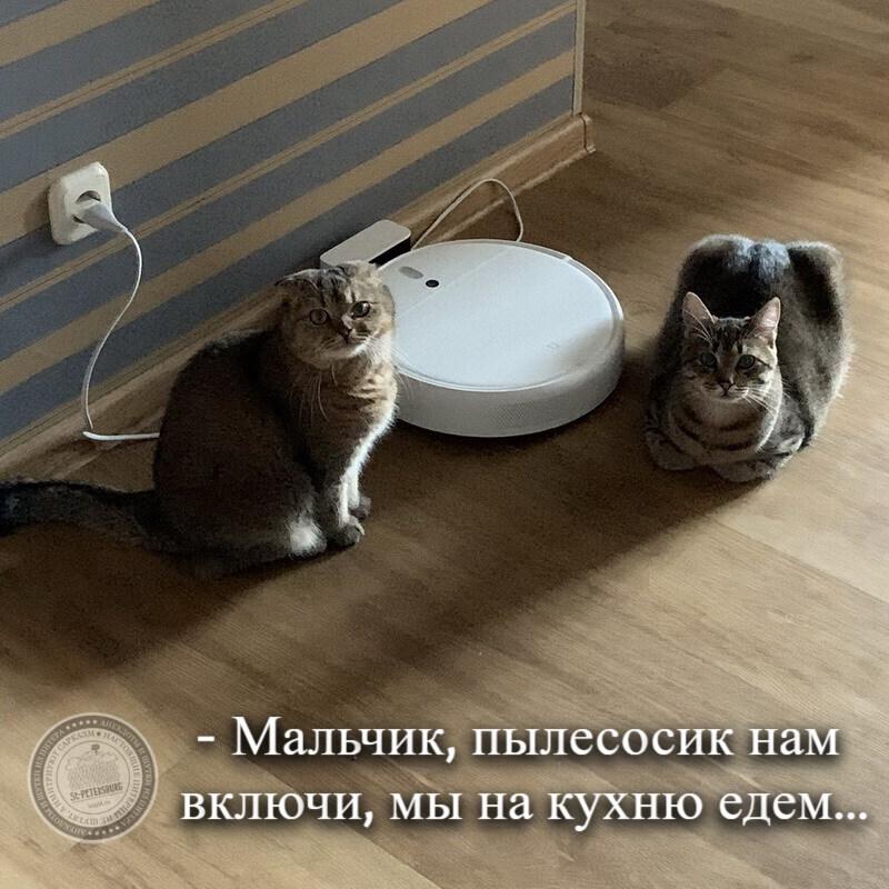 Мы на кухню едем